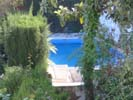 view of swimming pool from house